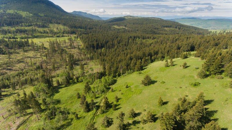 Gorgeous Quarter Section Property Halfway Between Sun Peaks & Kamloops